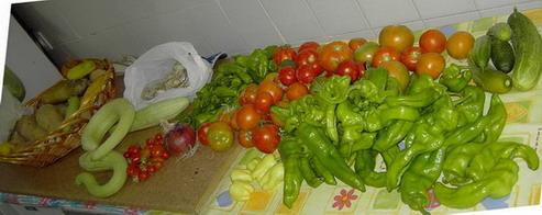 Agricultura amateur.